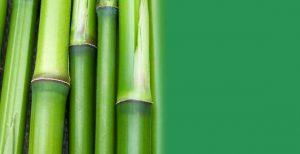 Premium Artificial Bamboo