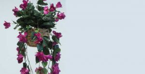 Amazing Artificial Hanging Plants
