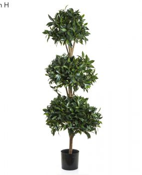 Artificial Sweet Bay Ball Tree 1.7mt on natural timber stems with realistic foliage