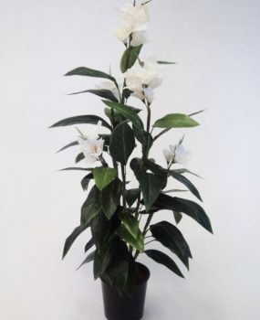 Artificial Canna Lily 1.2mt White-single – Quality Artificial Plant
