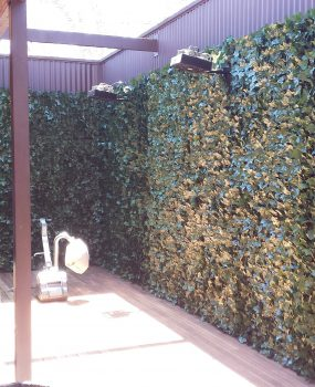 Artificial Ivy Wall – screening hedge
