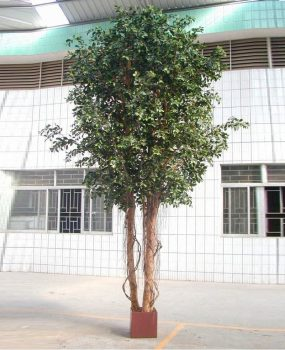 Artificial Ficus Retusa 3mt Giant Tree real timber trunk