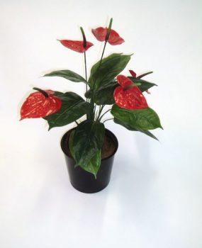 Artificial Anthurium Bush x 5 flwrs – Quality Artificial Plant