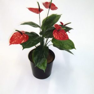 Artificial Anthurium Bush x 5 flwrs – Quality Artificial Plant