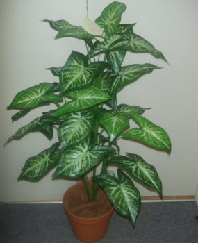 Artificial Syngonium Plant  90cm with realistic foliage