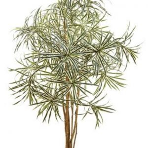 Artificial Dracena Reflexa Anita 1.2mt variegated on natural timber stems