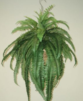 Artificial Boston Fern lge in cane hanging basket with lifelike leaves