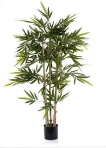 Bamboo Tree 1.2mt on natural stems