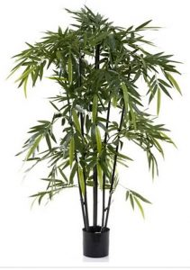 Bamboo Tree 1.5mt Black