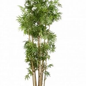 Artificial Bamboo Tree 1.6mt Japanese on natural Bamboo poles