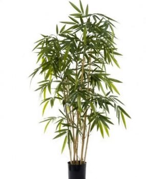 Artificial Bamboo Tree 1.6mt on natural Bamboo poles (Budget)