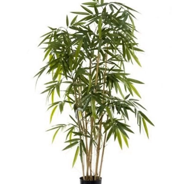 Artificial Bamboo Tree 1.6mt on natural stem