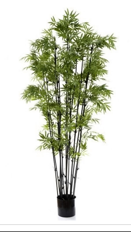 Artificial Bamboo Tree 1.9mt Black