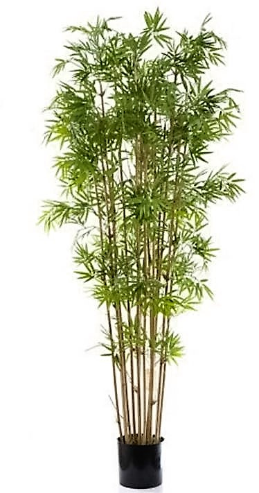 Artificial Bamboo Tree 1.9mt Japanese