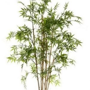 Artificial Bamboo Tree Oriental 1.6mt on natural Bamboo poles