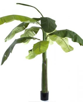 Artificial Banana Tree 1.5mt –  Silk Trees And Plants