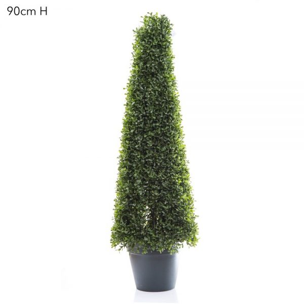 Boxwood Pyramid Tree 90cm