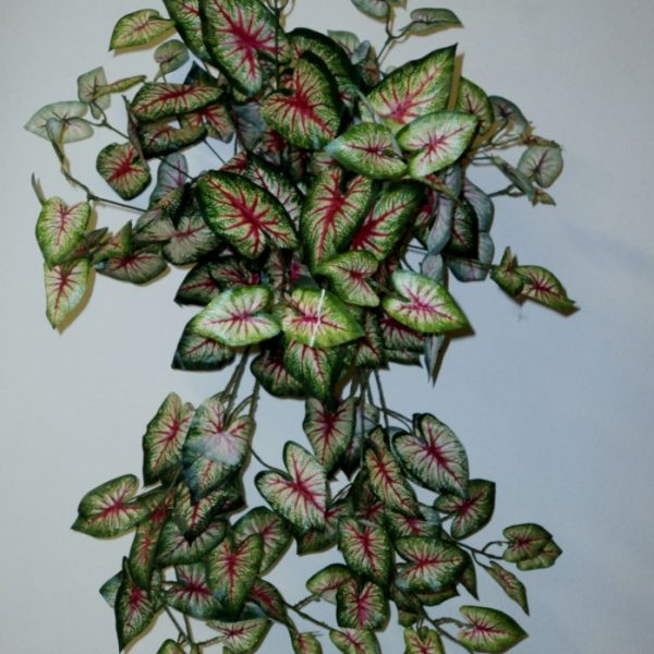 Artificial Caladium Vine in Basket