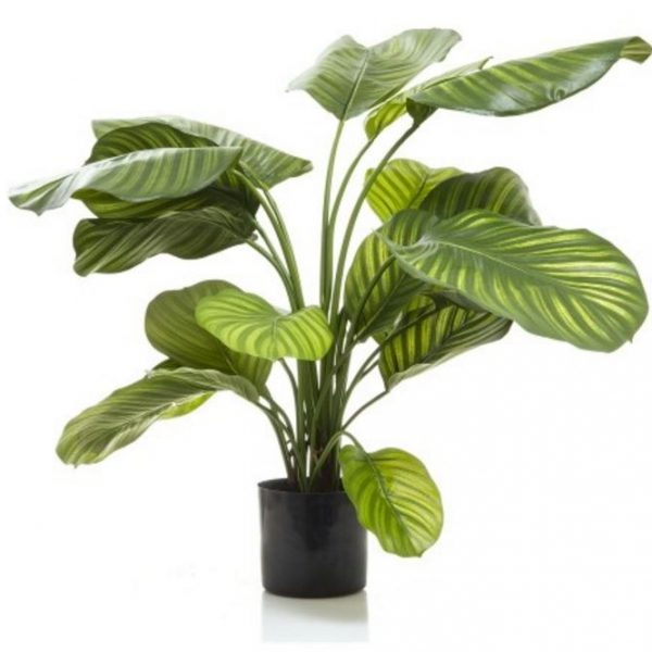 Artificial Plants up to 120cm