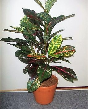 Artificial Croton Plant 90cm with 56 realistic colored leaves