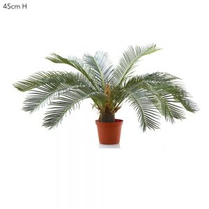 Artificial Cycus Palm 45cm with 22 realistic leaves and trunk