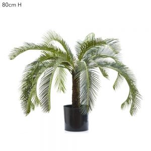 Artificial Cycus Palm 80cm with 21 real touch leaves and trunk.