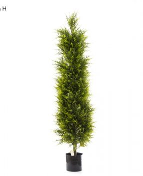 Artificial Cypress Pine Tree 1.5mt on natural timber trunk