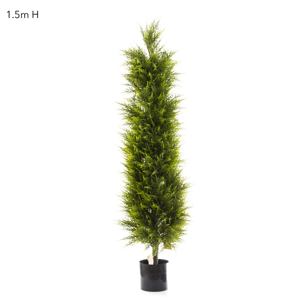 Artificial cypress pine tree on natural timber trunk for Pine tree timber