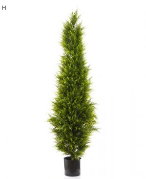 Artificial Cypress Pine Tree 1.8mt on natural timber trunk