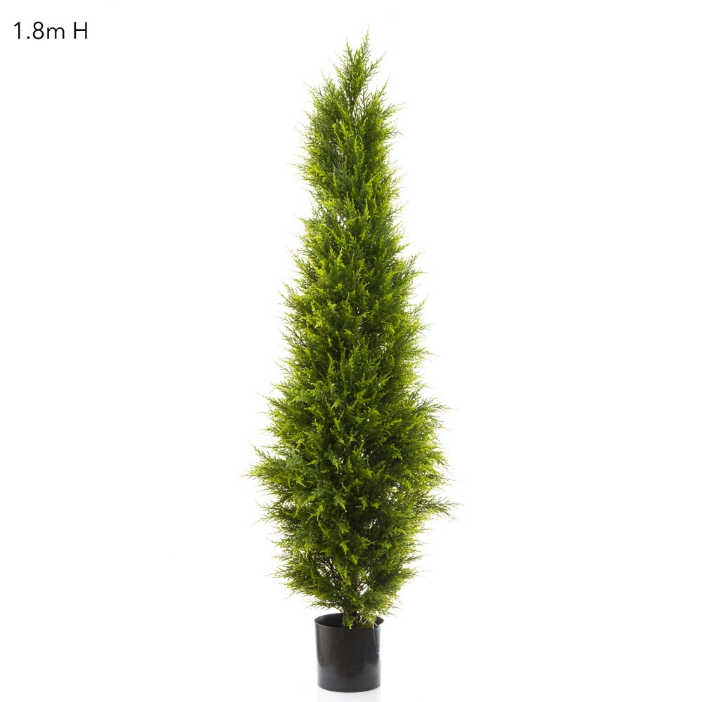 Artificial cypress pine tree on natural timber trunk Pine tree timber