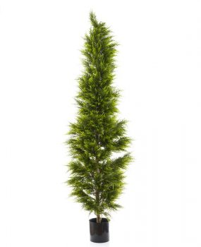 Artificial Cypress Pine Tree 2mt on natural timber trunk