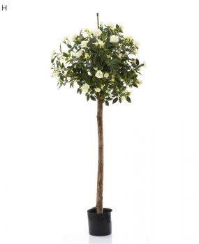 Artificial Diamond Rose Ball Tree 1.2mt – cream – made with real Rose timber stems