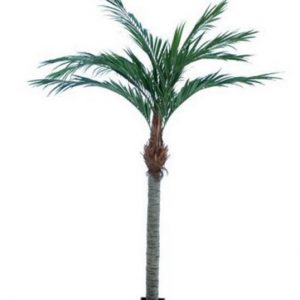 Artificial Majesty Palm 3.6mt with 12 realistic leaves and trunk