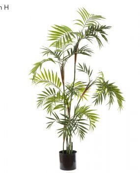 Parlour Palm 1.4mt made with real palm casings