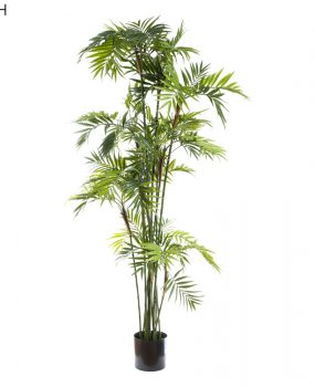 Artificial Parlour Palm 2mt with softly arching fronds