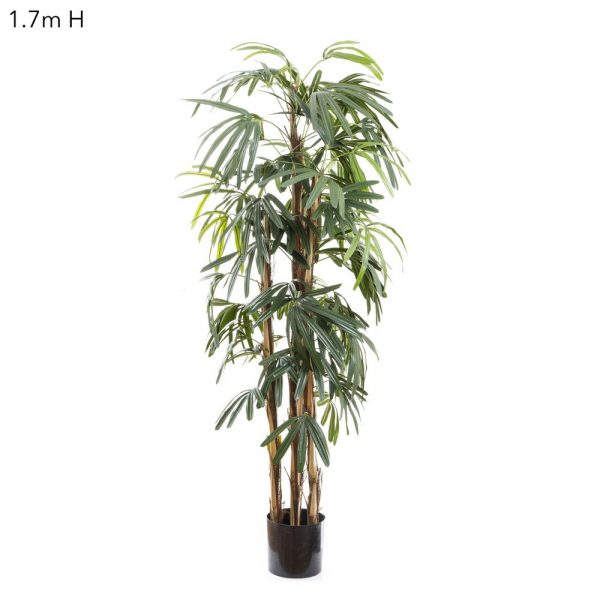 Artificial Raphis Palm 1.7mt