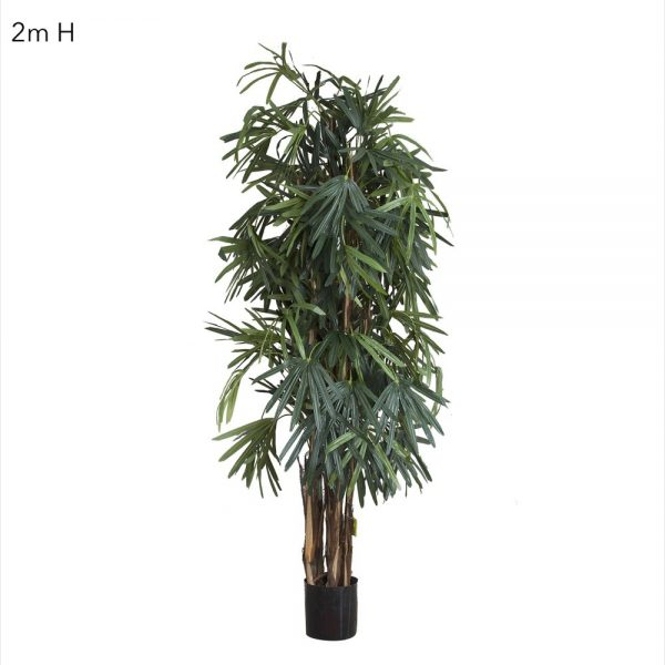 Artificial Plants over 2mts