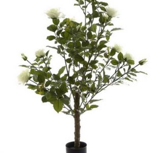 Artificial Rose Bush 1mt white on natural Rose stem with realistic flowers and foliage