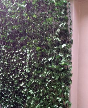 Ivy Wall Interior – Artificial screen