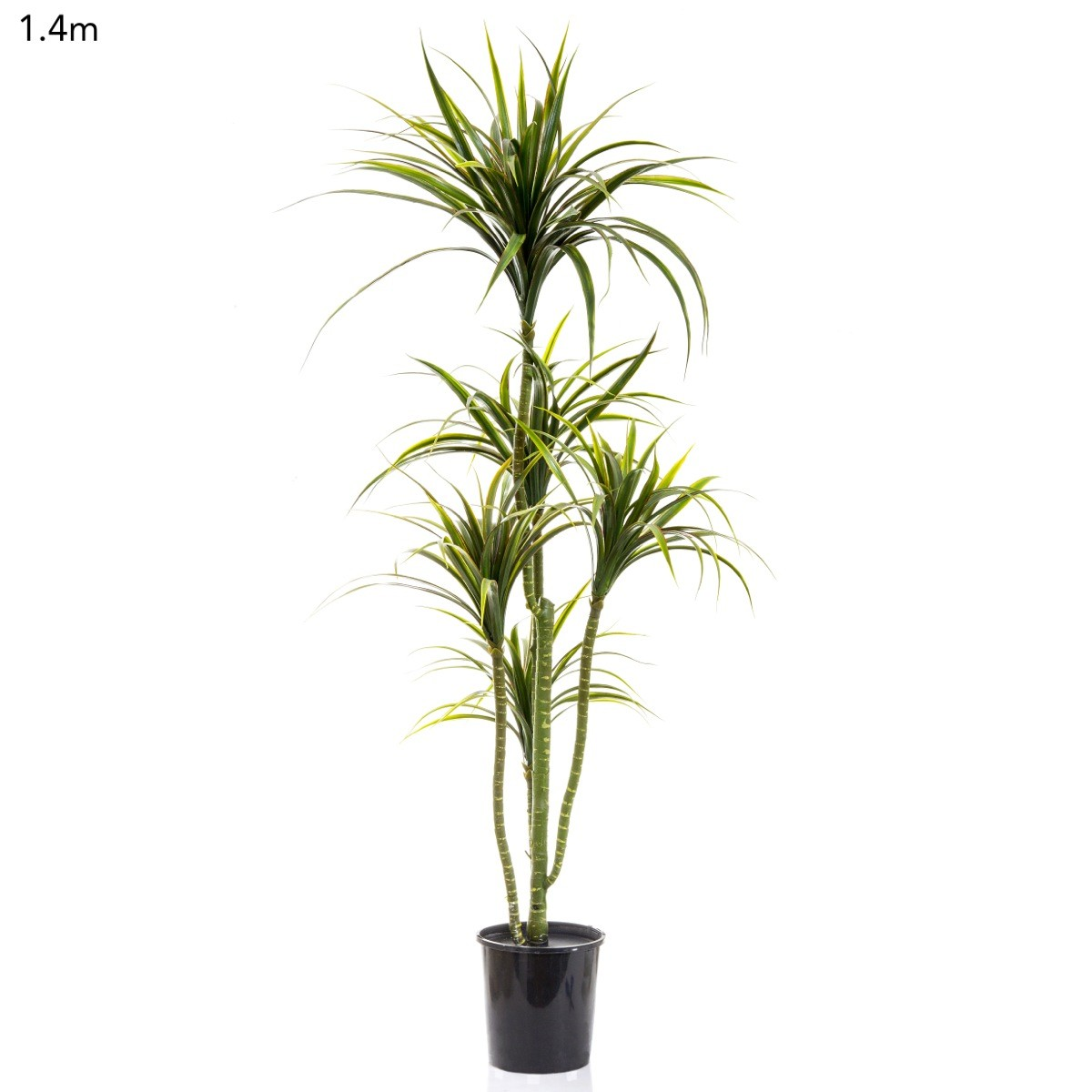 artificial yucca plant 14mt x 5 heads on realistic flexible trunks
