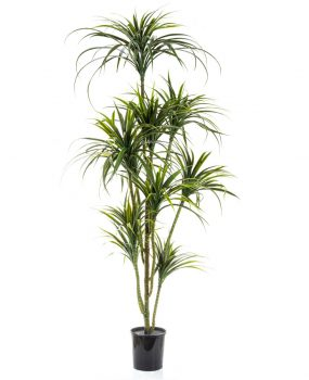 Artificial Yucca Tree 1.8mt with 10 heads of realistic foliage and flexible stems