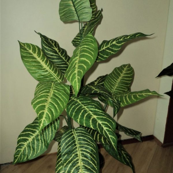 Artificial ZEBRA-PLANT-90CM-22 realistic leaves