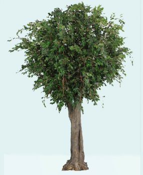 Artificial Ficus Exotica Giant Tree 3.4mt real timber quality artificial leaves