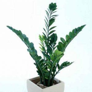 Zanzibar bush 1.1mt – Quality Artificial Plant