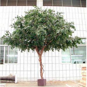 Artificial Ficus Exotica Giant Tree 3mt – 9680 lvs