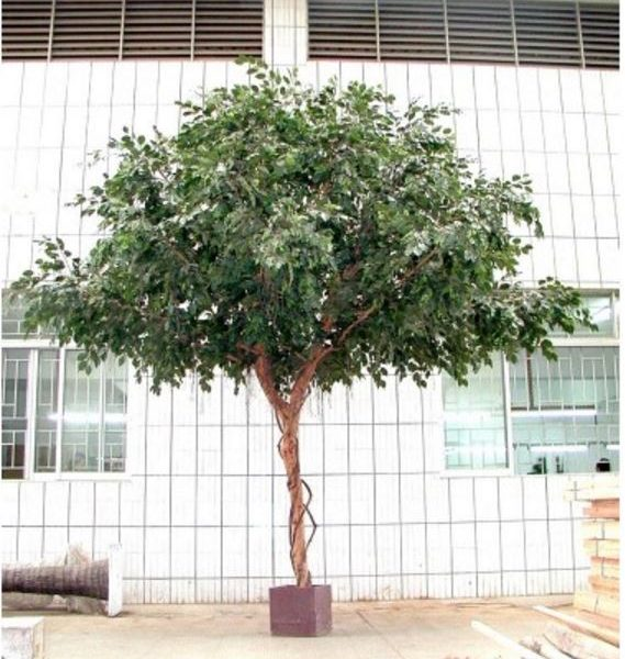 Artificial Ficus Exotica Giant Tree 3mt
