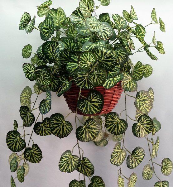 Artificial Saxifraga Vine in cane hanging basket single
