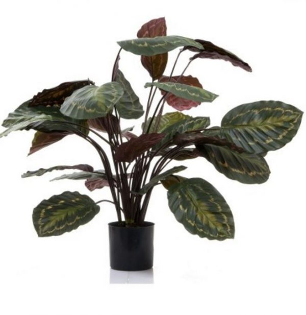 Artificial Calathea Plant 65cm Purple