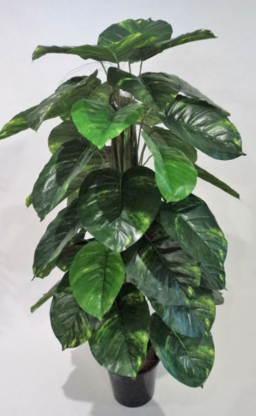 Artificial Pothos 1.6mt on totem pole 44 lvs