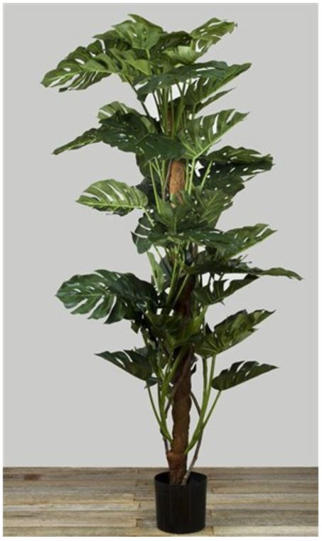 Artificial Split Leaf Philo Monstera Tree 2mt